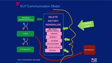 NLP Theory of Communication